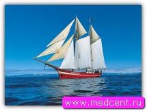 Парусники, моторные лодки и катера