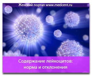 Содержание лейкоцитов: норма и отклонения