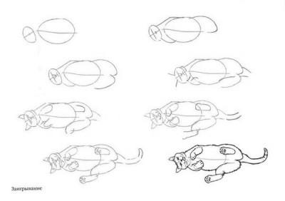 Как рисовать котёнка: схема № 3