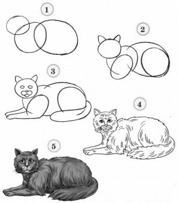 Как рисовать котёнка: схема № 9