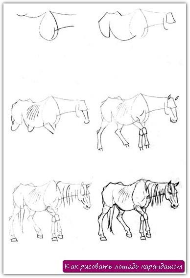 Как рисовать лошадь карандашом. Урок №10