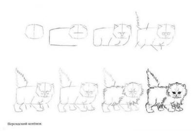 Как рисовать котёнка: схема № 13