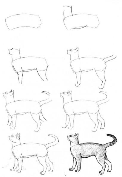 Как рисовать котёнка: схема № 15