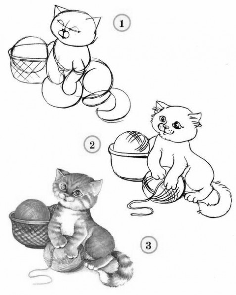 Как рисовать котёнка: схема № 16