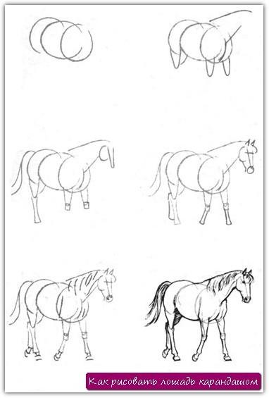 Как рисовать лошадь карандашом. Урок №18