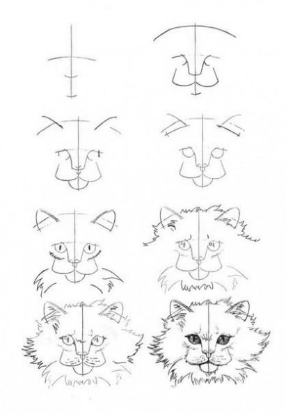 Как рисовать котёнка: схема № 19