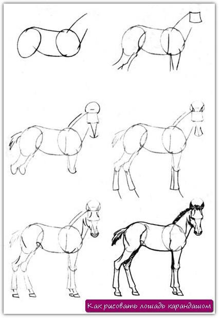 Как рисовать лошадь карандашом. Урок №4
