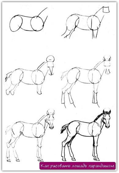 Как рисовать лошадь карандашом. Урок №9