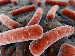 gardnerella-vlagalischnoy-infekcii_2