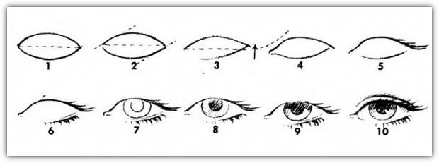 Как нарисовать глаза: схема №1