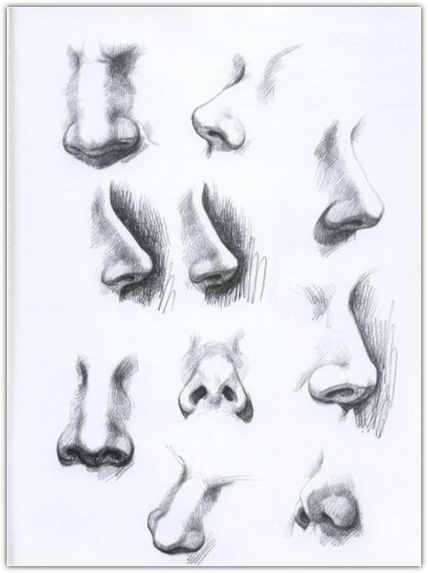 Как нарисовать портрет карандашом: пример №10