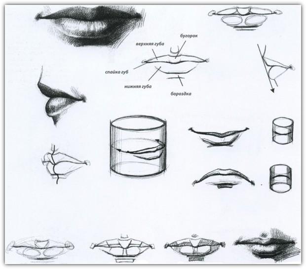 Как нарисовать портрет карандашом: пример №11