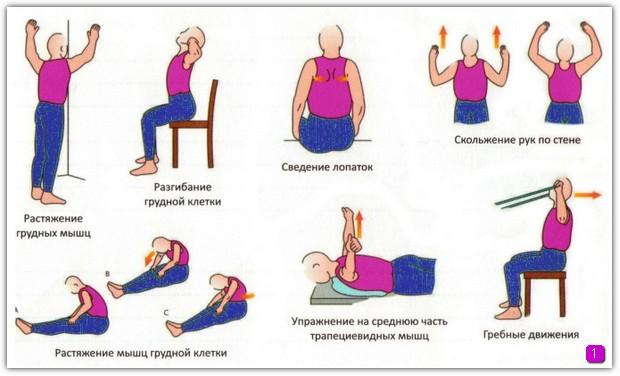 Схема по укреплению мышц верхней части спины